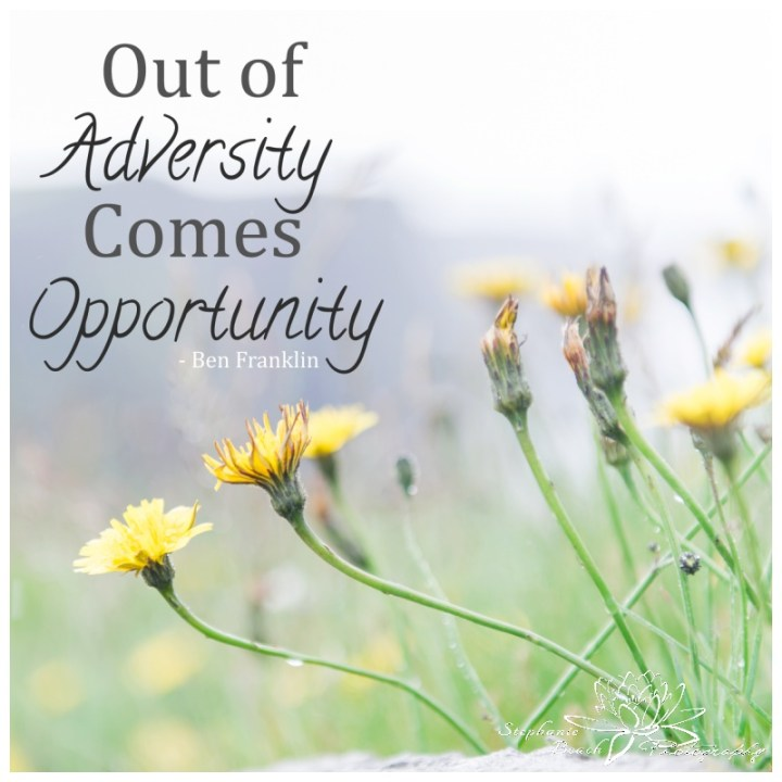Out-of-Adversity-comes-Opportunity-Stephanie-Beach-Photography-Inspiration-Quote