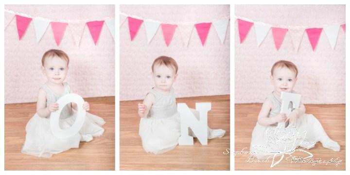 Ottawa-Family-Photography-First-Birthday-Stephanie-Beach-Photography