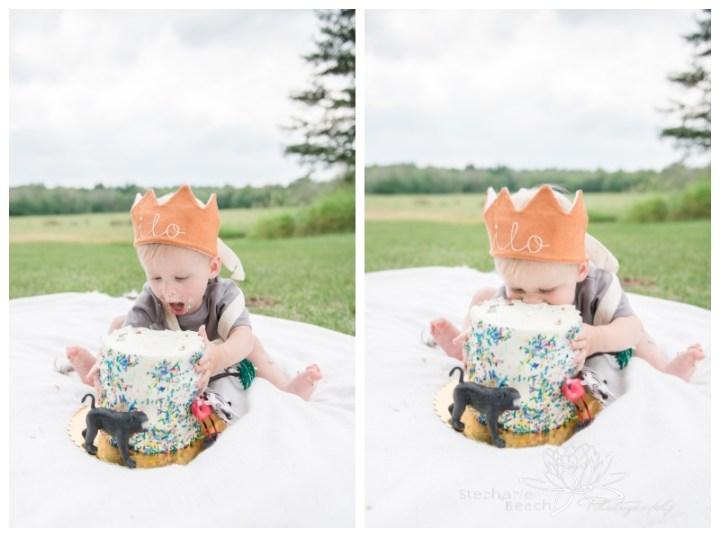 Ottawa-Almonte-Lifestyle-First-Birthday-Portraits-Cake-Smash-Family-Session-Stephanie-Beach Photography