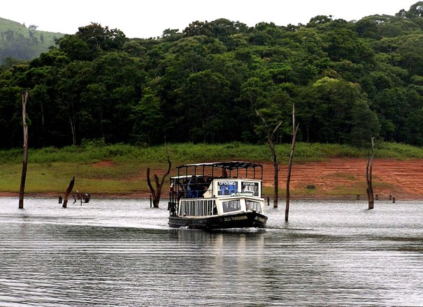 periyar wildlife sanctuary thekkady kerala Image