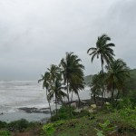 Misty Goa in Monsoon