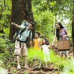 Nature walks – The best way to witness the wonders of nature