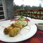 Machhli Kebab