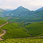 A tryst with the clouds – Meghamalai