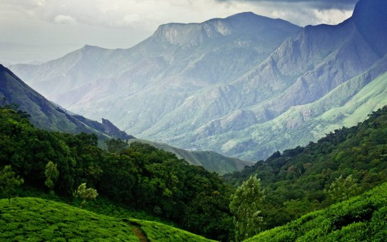 Munnar and Puducherry witnesses the making of Life of Pi