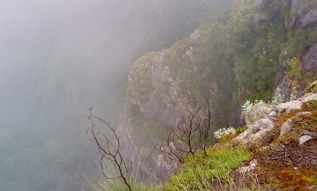 Kodaikanal Suicide Point fog