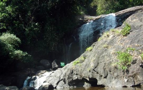Eravikulam National Park - A must see spot in Munnar