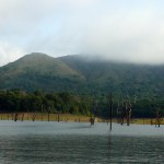 Top Ten Amazing Attractions in and around Thekkady