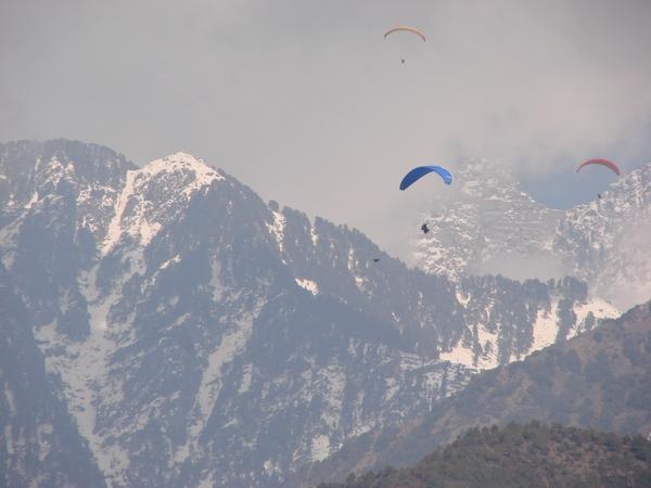 paragliding_in_dharamshala