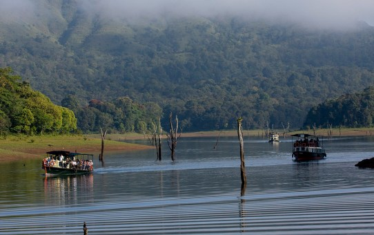 10 Reasons To Visit Thekkady this Summer