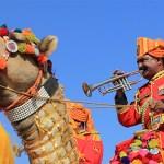 The Scintillating Mount Abu Summer Festival