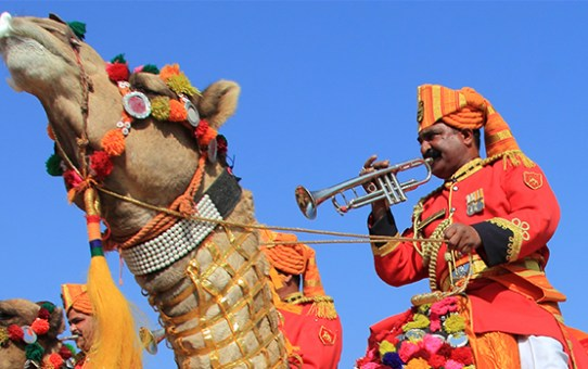 The Scintillating Mount Abu Summer Festival