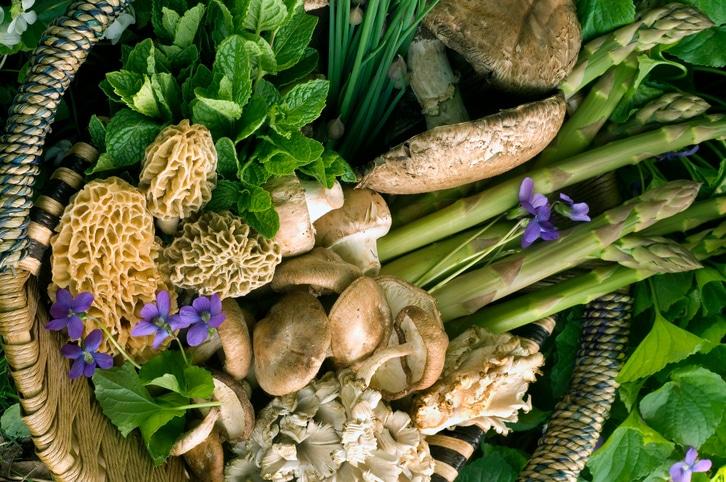 egészséges növéneyk