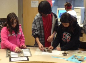 St. Joseph's students sort through artifacts trying to distinguish between bone and rock.