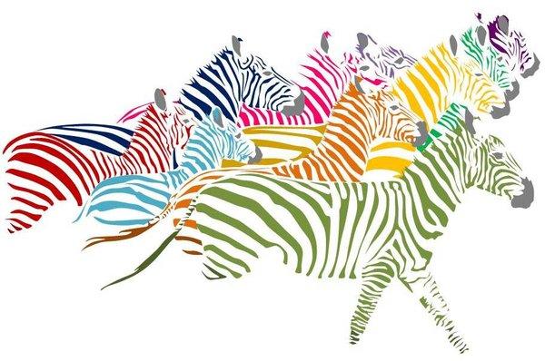 herd_of_rainbow_zebras_by_miyakopandaholic