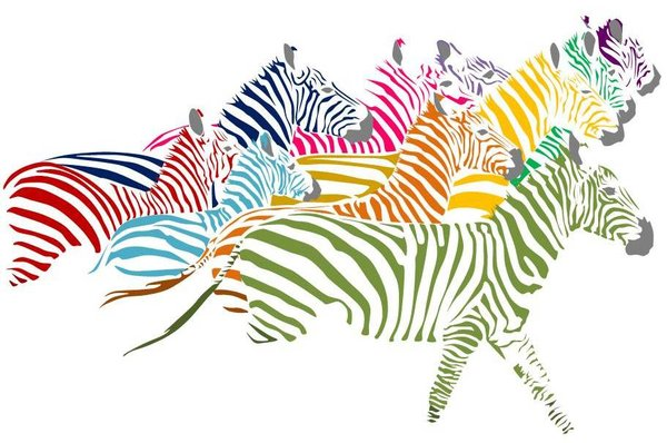 herd_of_rainbow_zebras_by_miyakopandaholic