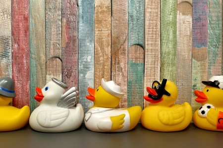 Leadership Ducks