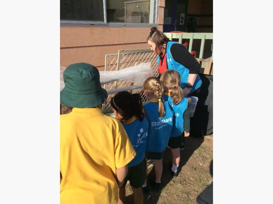 teacher gardening with children