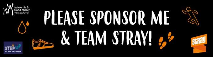 Sponsor Team Stray in the Step Up Challenge