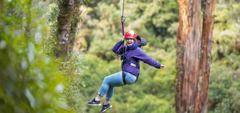 Ziplining with Rotorua Canopy Tours - Stray New Zealand