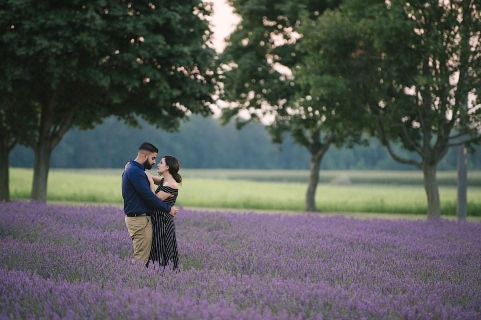 lavender field engagement photos bonnie-heath-1