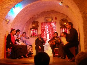 at-the-flamenco-show