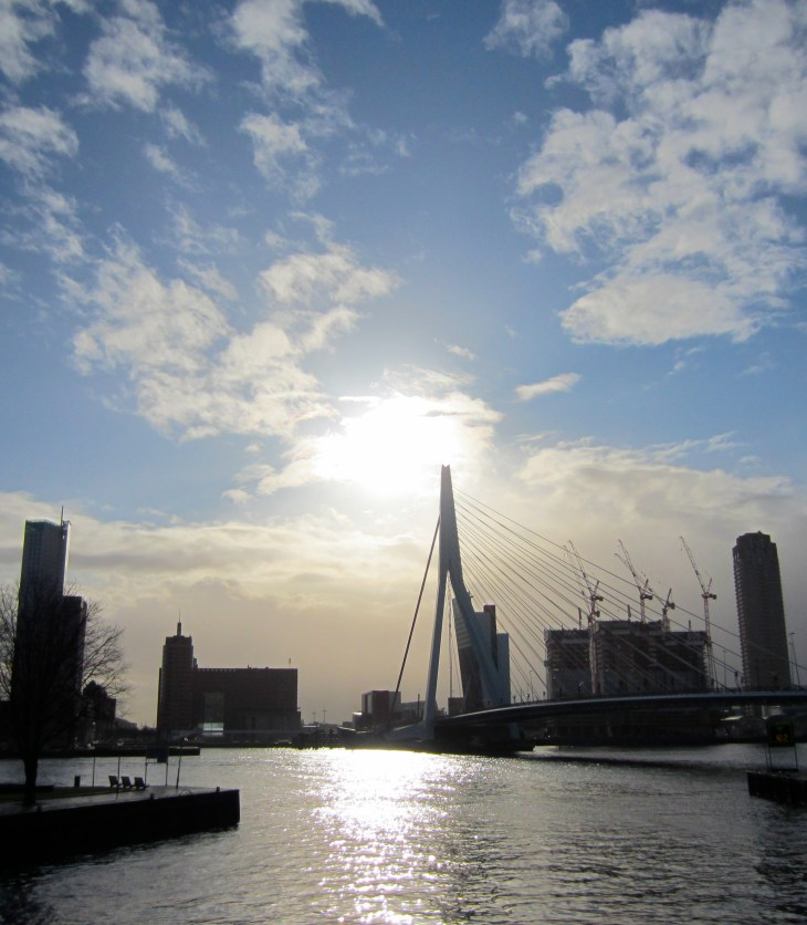 Erasmus bridge and Rotterdam skyline