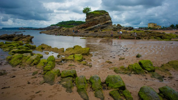 If you travel to the right while the tide is low, you'll discover many green-covered rocks and a particularly large one as well.