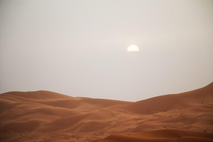 Sahara, morocco, olson, 8
