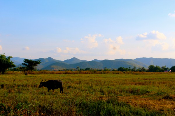 Mountains, Banthi, Thailand - Manning - Photo 8