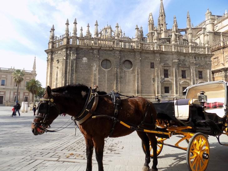 Horse carriage outside Catedral de Sevilla.