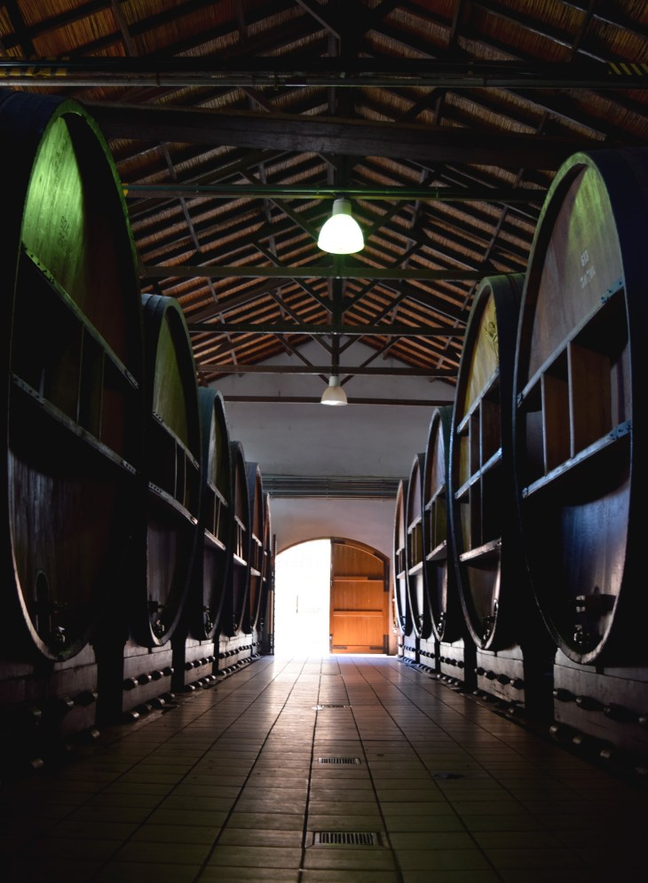 Wine-making tanks, Mendoza, Argentina- Pakalniskis- Photo 4