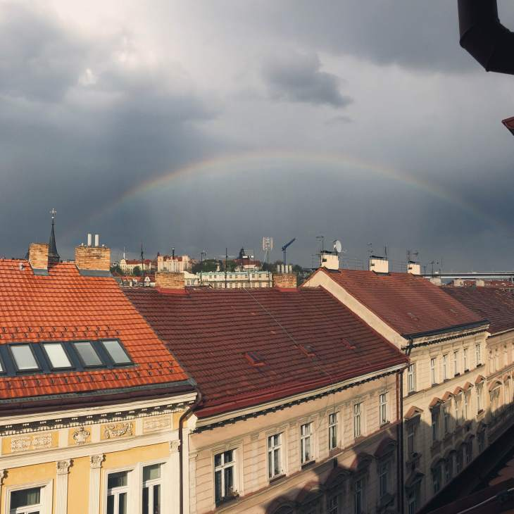 The view from my window is beautiful as it is, but there is something special about it after a storm.