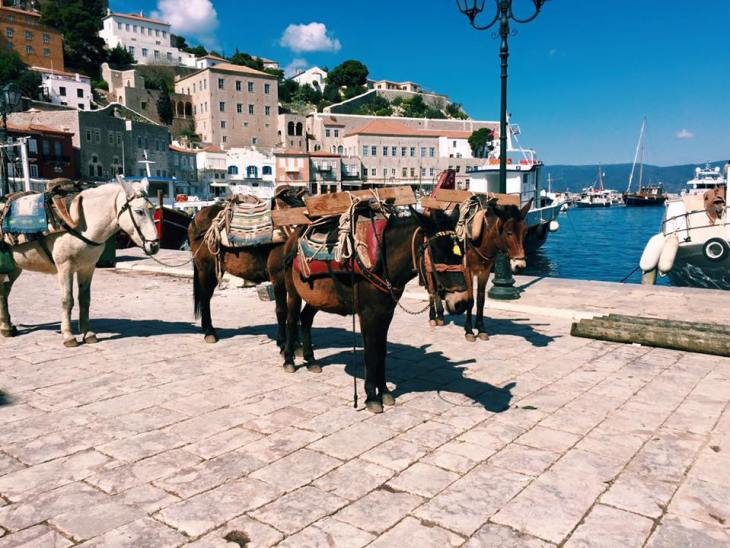 Aegina-Hydra Greece Murphy 5