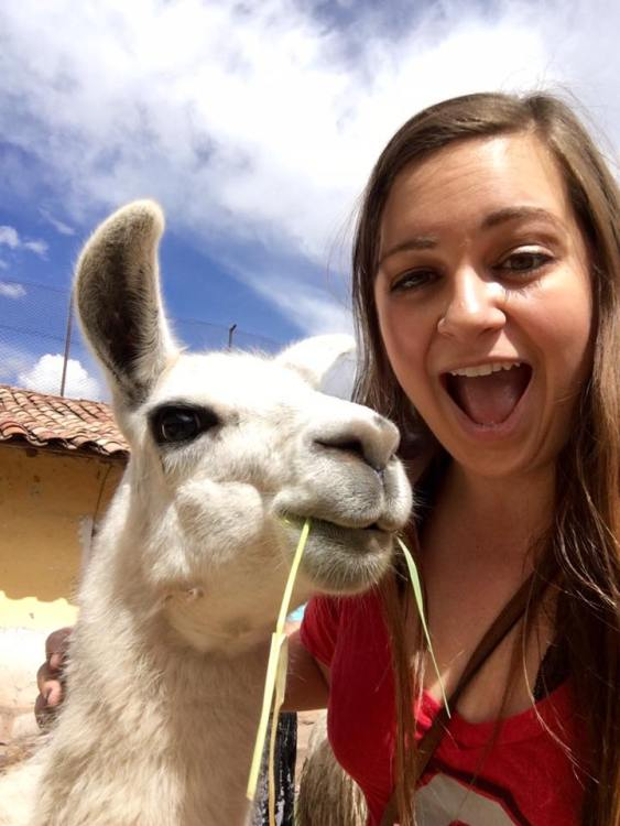 Walking back from the Plaza de Armas, I couldn't resist getting a picture with a llama