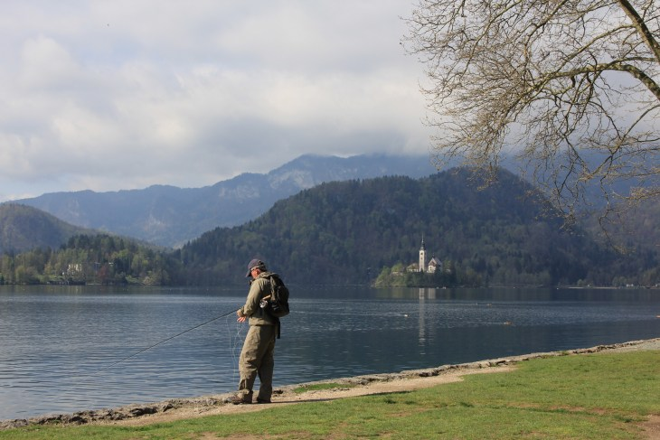 Natures Beauty - slovenia.bled.spring2016.natures_beauty.waters_edge.madelyn_falteisek.0