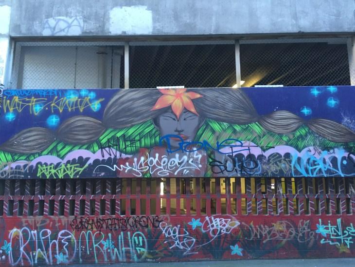 Wellington Street Art- Wellington, New Zealand -Grant, Photo 5