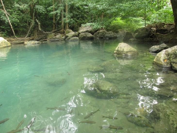 erawanpark_kanchanaburi_thailand_natalieschunk_photo7