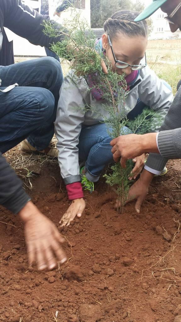 planting-_meknes_morocco_michaellapatterson_photop