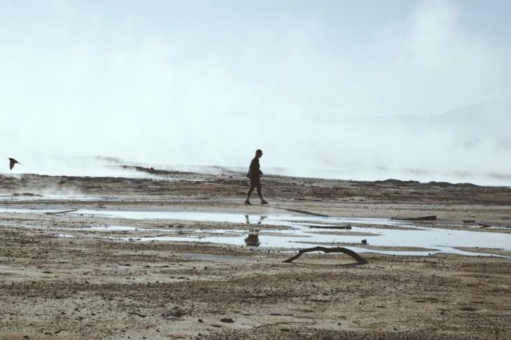 foggy mud pools at wai-o-tapu geothermal wonderland