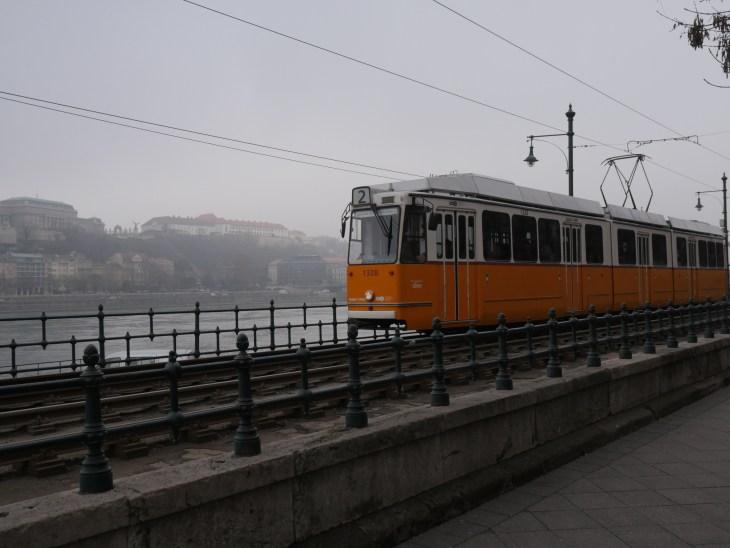 orange tram traveling along waterfront