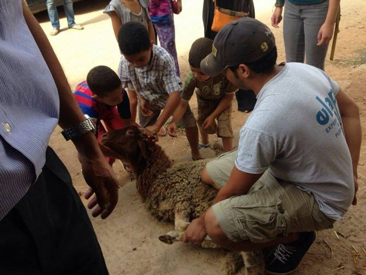 ISA Volunteer Day in Meknes, Morocco