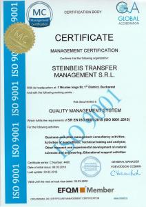 Steinbeis ISO 9001:2015