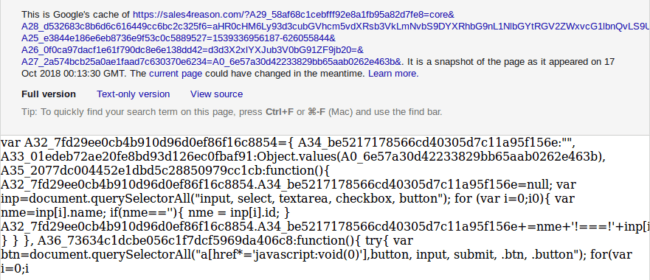 Form grabber from sales4reason[.]com in Google's cache