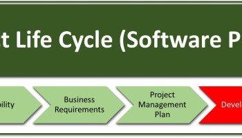 Is this a software project or a business project?