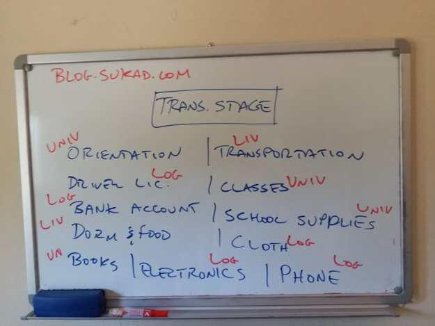 Categorizing the elements