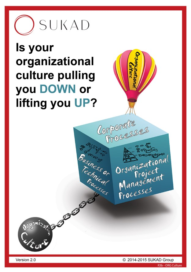 Is your organization culture lifting you up or holding you down? | The current dire straits of project management
