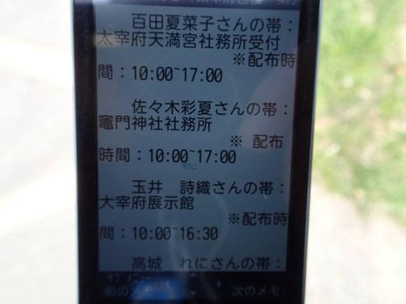 P3256754