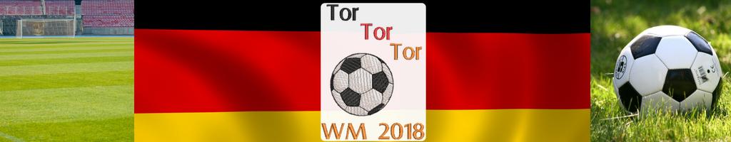 FUSSBALL WM 2018 - Tor Tor Tor