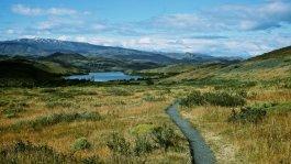 Patagonia 116